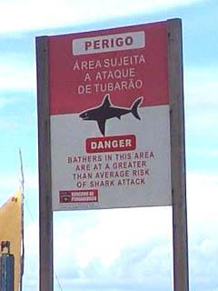 サメが出る!拡大.jpg